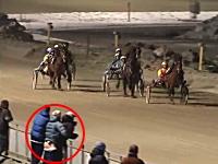 競馬中継に怪しい行為をしている男女が映ってしまう。興奮して腰をフリフリ