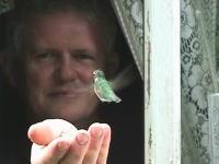 トリトリ動画。手からエサをとるハチドリがとってもカワ(・∀・)イイ!