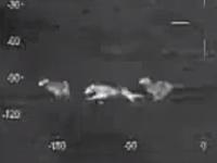米軍「赤外線監視装置でワンコ眺めてたらトラックに轢かれてしまう瞬間が」