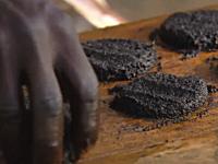 50万匹の蚊で作られたハンバーグ。蚊の集め方と食べ方のビデオ。アフリカ。