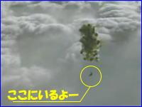 エクストリームスカイダイビング 風船おじさん状態から落下