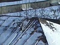 カラスの賢さは異常。雪でスノーボードを楽しむカラスの姿が撮影される。