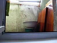 窓からそろ~りと部屋の中を覗き込むニャンコの動きと表情が話題に
