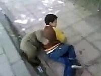 熊の子供と人間の子供のガチレスリング。これはじゃれ合ってる?虐待??