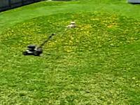 これは賢いな。ぐるぐる自動芝刈り機 手間を掛けずにお庭が綺麗に!?