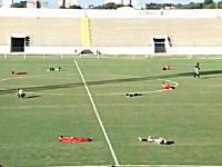 サッカーの試合中に大量のハチが選手たちを次々と襲うハプニング。ブラジル