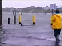 リアル?ハリケーン「サンディ」の影響でNYの町にサメが出没!フェイク?