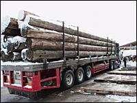 大木を満載したトレーラーの豪快な積荷の下ろし方。車が潰れそうwwwww