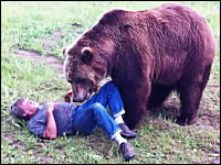 ハイイログマでけええ(@_@;)ぱっとみ食われているように見える巨大熊とヒト