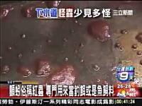 中国の下水道にグロ生物がGyaaaa!動画。これはきもいビクンッ!ビクンッ!