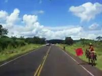 馬に乗った人が赤旗を振っていると思ったら凄い大渋滞に遭遇しちゃった。