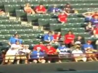 メジャーリーグで選手が投げ入れたボールを取ろうとした観客が落下して死亡