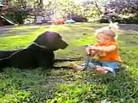 大きなワンコと小さな女の子のほのぼのビデオ めちゃ楽しそうだね