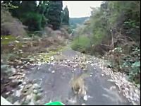 酷道。自然に帰り行く道をバイクで走る。旧国道222号線・上熊隧道(上熊峠)