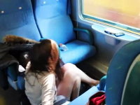 旅行の浮かれ気分で電車の窓から顔を出して死にかけたギャルのビデオ。