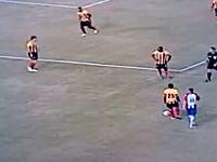 サッカー場に舞い降りたフクロウさんを蹴飛ばすサッカー選手の動画が話題
