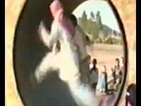 人間が回し車に挑戦してもやっぱりハムスター大回転になってしまう動画。