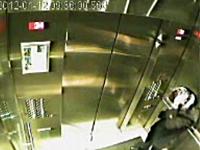 エレベーターでワンちゃんのリードが挟まってしまう恐ろしい監視カメラの映像