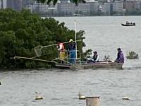 琵琶湖の外来魚(ブラックバス)駆除はこうやって行われる。電気ショッカー