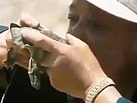 捕まえたスッポンの生血を吸いその場でさばいて生で食べる日本人?の映像
