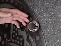 どうしてこうなったwマンホールの小さな穴にハマってしまったスズメさんの救出劇