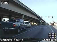 ほのぼのビデオ。道路上で立ち往生しているアヒルの雛たちを保護するポリス