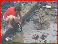 子猫を泥水に漬けて遊ぶ中国のお姉さん。そこへ母ネコが救出にやってくる。