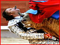 ぎゃああ!闘牛士が牛に喉を貫かれて口から角が出る痛すぎるハプニング映像