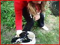 生きた子犬を川へ投げ捨てる少女の動画 これは炎上して逮捕されろよ