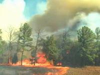 強風に煽られた炎のスピード。森林火災はなぜ広がるのか。映像が公開される