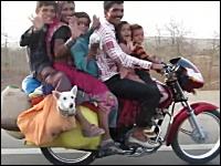 犬がシュールすぎるww一台のバイクに一家6人+2匹!w(゚o゚)w乗りすぎww