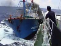 尖閣諸島問題、衝突の動画がYouTubeに公開され話題に。本物?偽物?