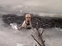 良く頑張った。氷の割れ目から極寒の川に落ちてしまったワンコの救出劇