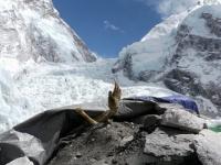 エベレストのデスゾーンと呼ばれる地帯に横たわる挑戦者たちの遺体。動画像