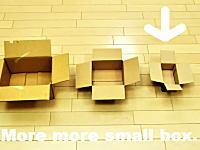 どんな小さい箱にも入りたがるネコ。どのサイズで諦めるのか実験してみたw