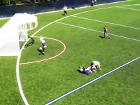 ルールが想像できねえスポーツ動画。丸いコートでサッカーとハンドボール