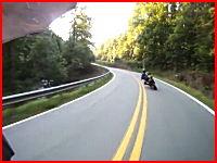 七面鳥が木っ端微塵。峠を攻めていたバイクが七面鳥と衝突してどーん