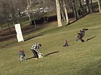 カナダ怖すぎ。公園で遊んでいた赤ちゃんがイヌワシに食われそうになる。