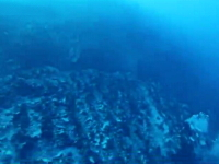 ダウンカレントに巻き込まれて海底に引きずり込まれるダイバーの映像。