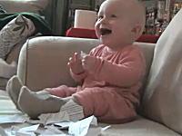 ほのぼの動画。目の前で紙を破ると大喜びする赤ちゃんの映像。幸せ動画。