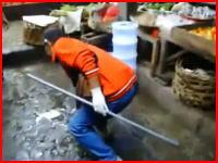 バリ島の狂犬病対策で行われていた吹き矢による野良犬の毒殺駆除作戦