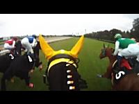 これは新しいな。競馬の馬載映像。ゲートインからゴールまで。東京競馬場。