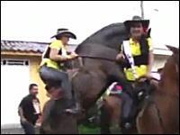 馬のチンコがフル勃起。ギャルが騎乗する馬が突然アレを開始して・・・。