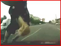 横断歩道を渡っていた親子連れをまともにはねてしまう瞬間のドラレコ動画。