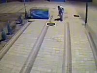 マンホールの蓋をあけて犬をぽいっ(@_@;)下水道に犬を捨てる鬼畜なヤツが撮影される
