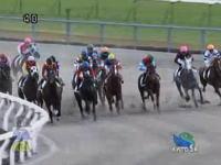 京都競馬場で先頭を走っていた馬が柵に接触、騎手が柵の外にぶっ飛ぶ事故