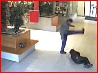 突然見も知らぬヤンキーに暴行されボッコボコにされてしまう男性のビデオ。