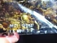 カンタス航空の機内で配られたスナックがうじ虫だらけ動画。フライング蛆虫