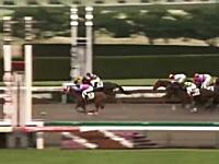 鳥肌競馬 14頭中14番人気の最低人気馬が驚異の末脚をみせつけた