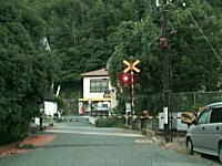 なんだこれ。熊本県にある踏み切りがおかしい動画。開いたのに通れないw